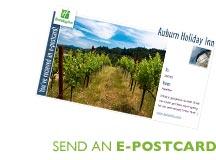 Send an E-Postcard